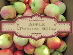 Apple Picking Traditions in Nebraska City