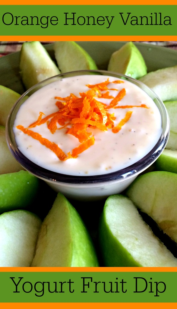 Orange Honey Vanilla Yogurt Fruit Dip with Orange Zest
