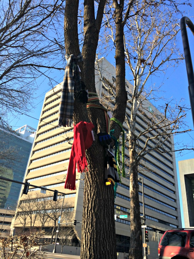 Scarves on a tree