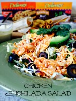 Chicken Enchilada Salad with Creamy Avocado Enchilada Sauce Dip