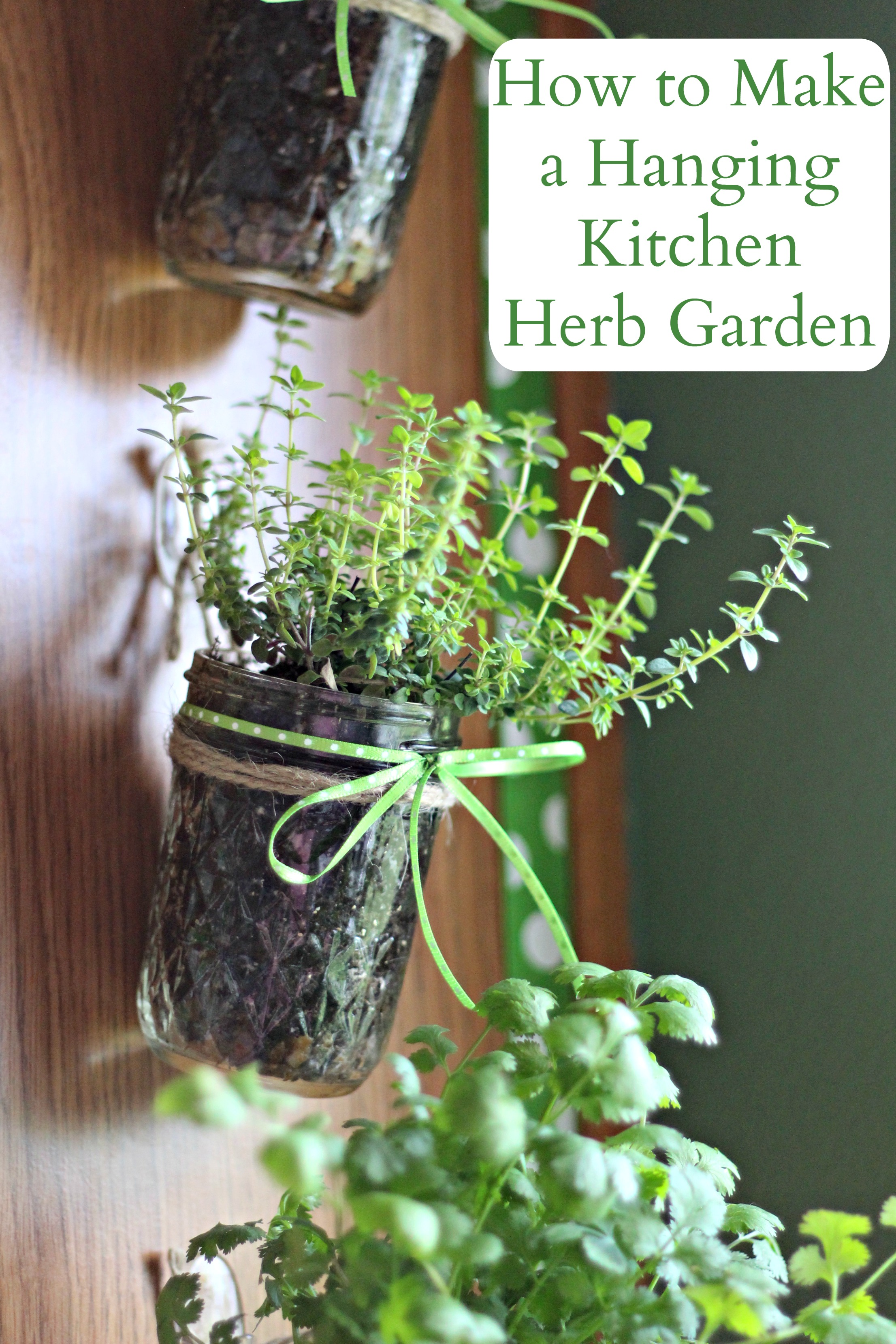 How To Make A Hanging Kitchen Herb Garden Living A