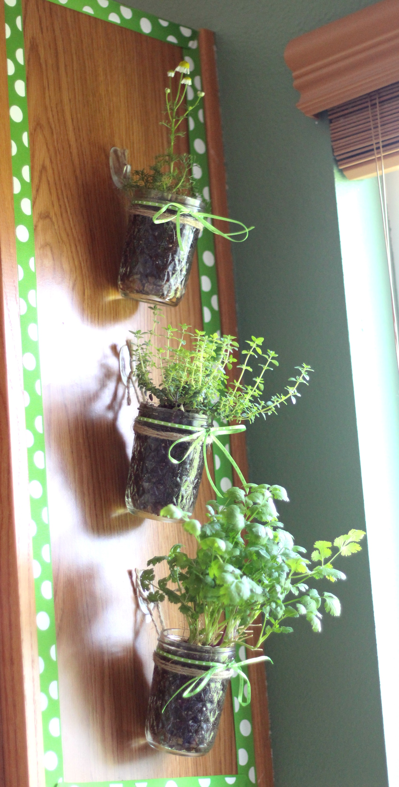Awesome How To Make A Hanging Kitchen Herb Garden With Command™ Hooks  #ProjectAmazing #Ad