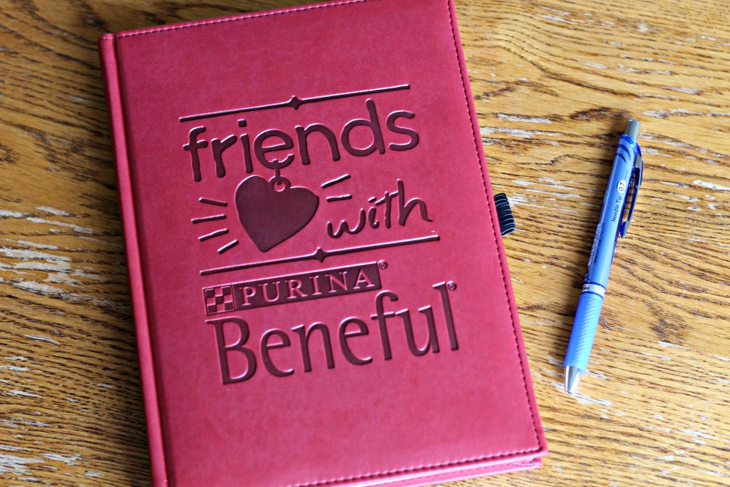 It's time to tell our story with Glory and I'm excited to share it with you! #FriendsWithBeneful #PurinaPartner