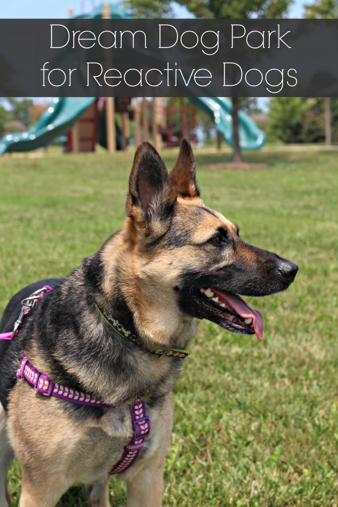 Designing a dream dog park for reactive dogs. #ad #FriendsofBeneful #DreamDogPark