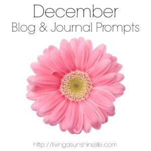 December Blog and Journal Prompts