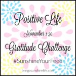 Gratitude Challenge for November #SunshineYourFeed
