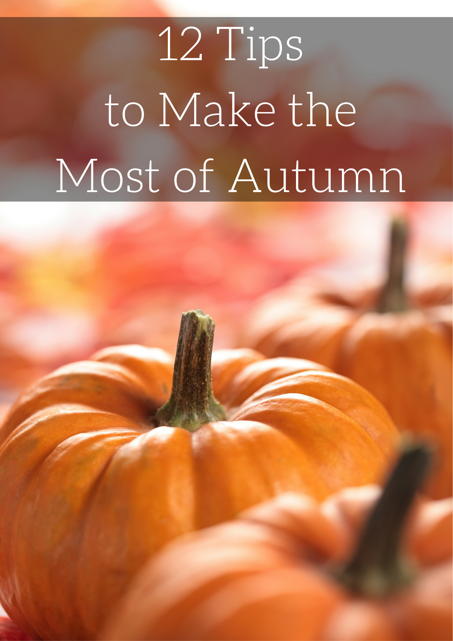 Tips To Make Living Room Cozy: 12 Tips To Make The Most Of Autumn
