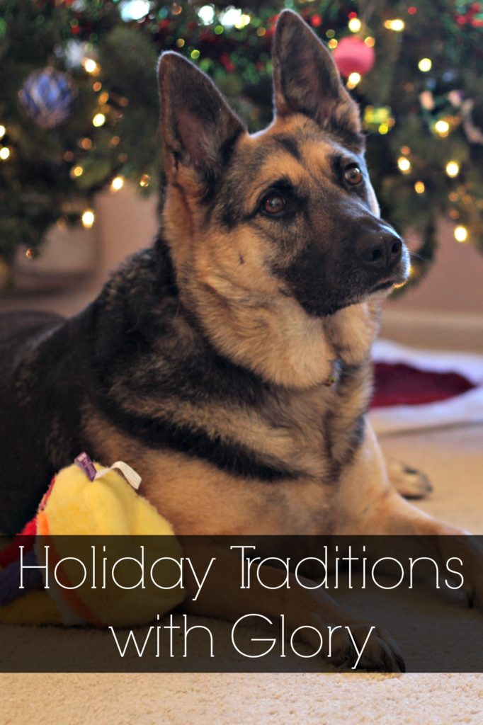 Ideas for celebrating special holiday events with dogs. Beneful surprised Glory with some treats in honor of her adoption/birthday celebration too! Ad #FriendsofBeneful #HappyHolidays