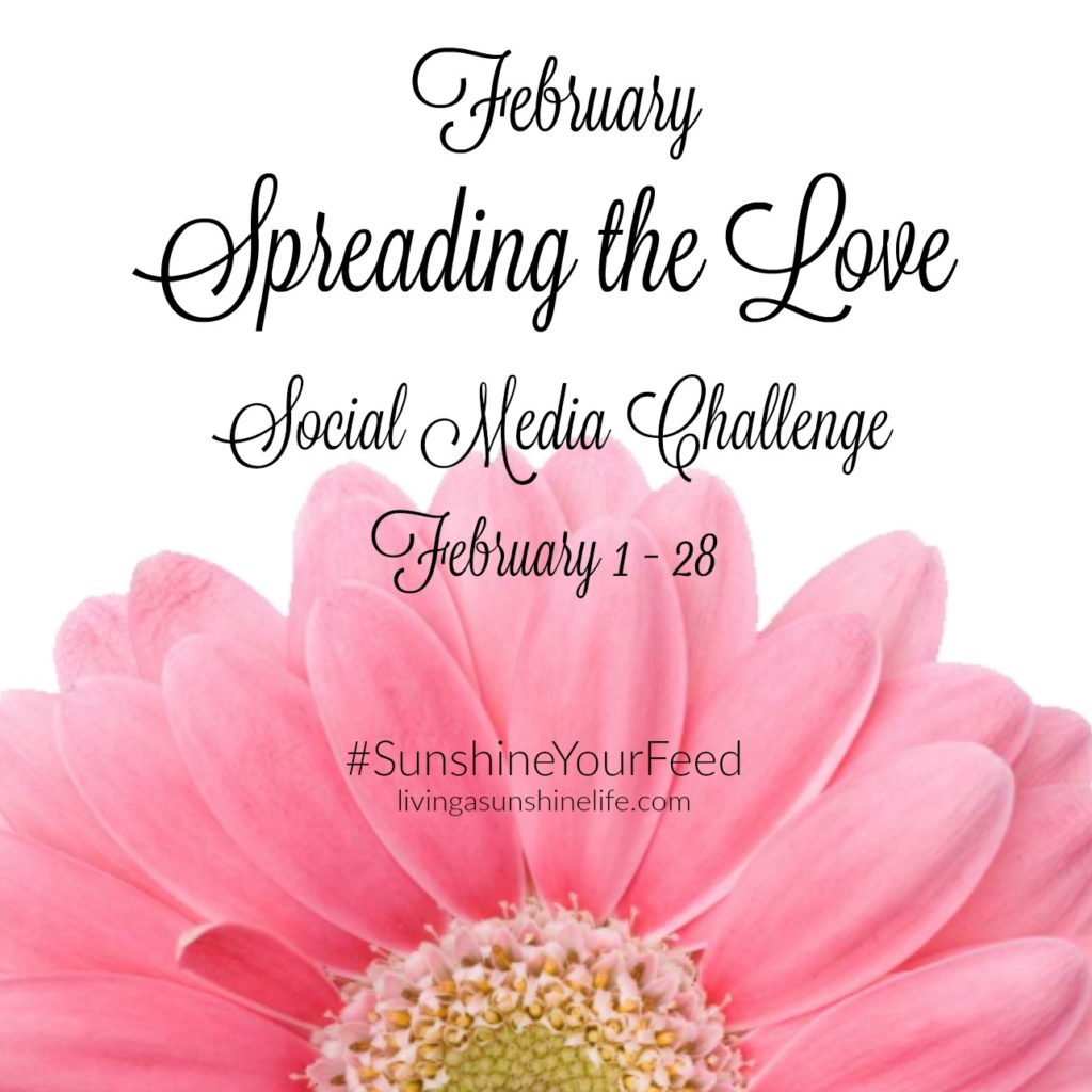 February Spreading the Love Social Media Challenge #SunshineYourFeed