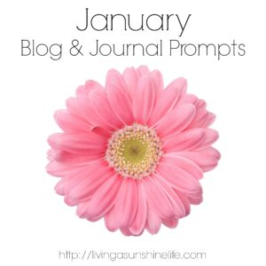 January Blog and Journal Prompts