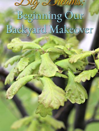 Big Dreams: Beginning Our Backyard Makeover