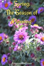 Spring: The Season of Planning