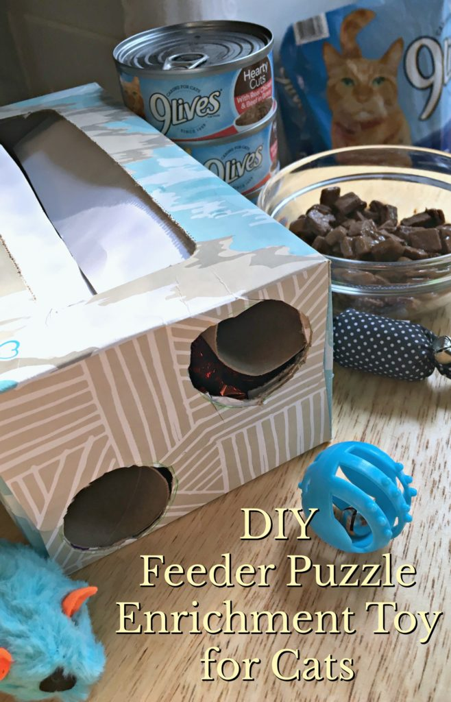 Diy Feeder Puzzle Enrichment Toy For Cats Living A